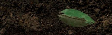 ares soil cam